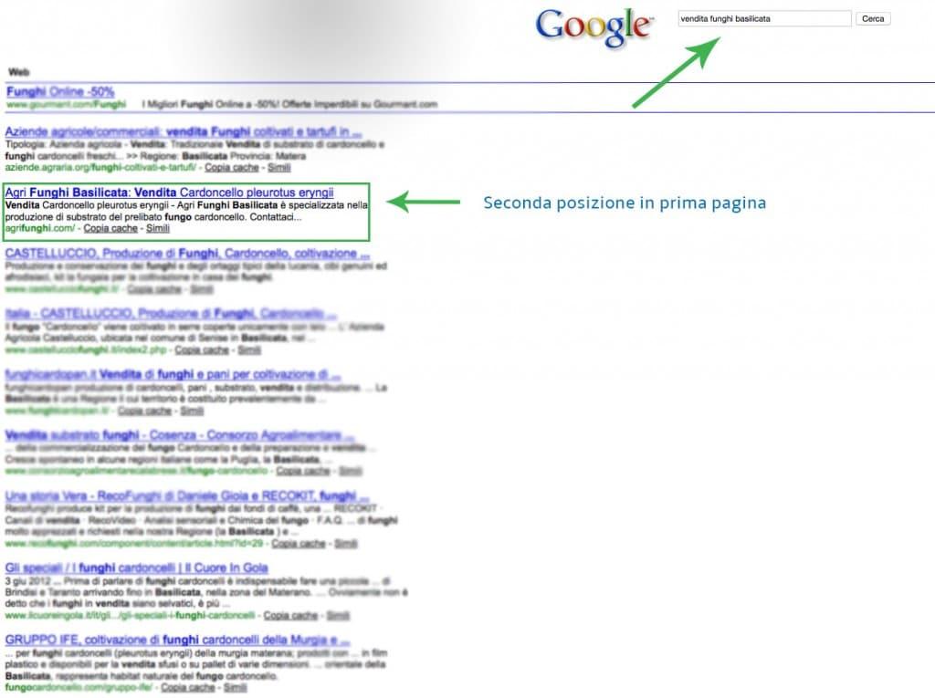Posizionamento motori di ricerca SEO